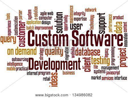 Custom Software Development, Word Cloud Concept 5