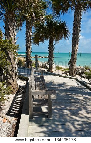 Bench on a Palm Tree lined Wooden Boardwalk leading to the Beach