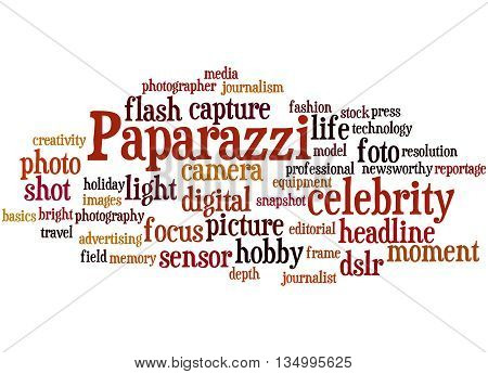 Paparazzi, Word Cloud Concept 9