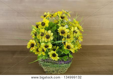 Flowers in the pot against wooden background