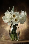 stock photo of flower vase  - White flowers in a vase - JPG