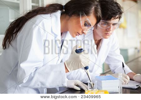 Serious science students making an experiment in a laboratory