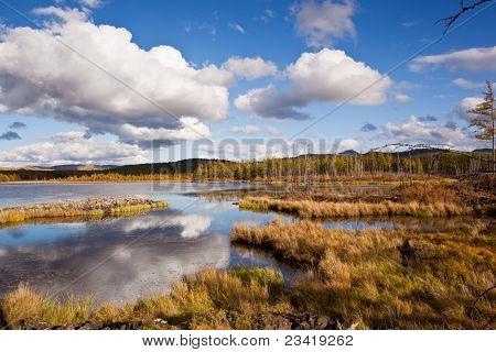 Grünland und Feuchtgebiete