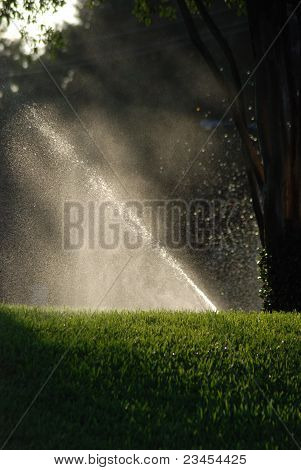 Watering Grass