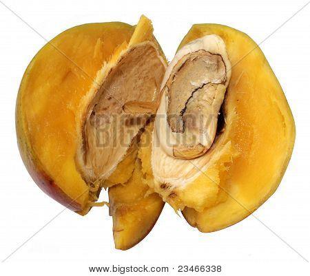 Mangos Rifled
