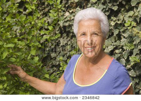 Senior Lady In Her Garden