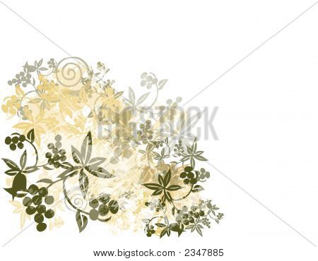 Foliage And Grapes Illustration