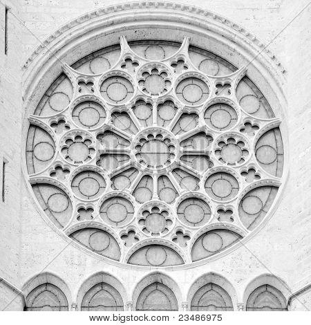 Notre Dame rosetta