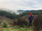 Hunter With His Back To The Camera Facing Towards A Clearcut Looking For Elk In A Tree Farm In Orego poster