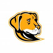 Mascot Icon Illustration Of A Head Of A Labrador, Labrador Retriever Or  Lab, A Type Of Retriever-gu poster