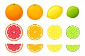 Vector Illustration In Flat Style. Set Of Whole, Slice And Half Fruits Of Orange, Grapefruit, Lemon  poster