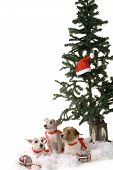 stock photo of christmas dog  - Three dogs sitting by the christmas tree - JPG