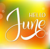 Hello June Lettering. Elements For Invitations, Posters, Greeting Cards. Seasons Greetings poster