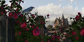 Blue Jay Among The Roses