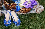 Bright Blue Female Sandals And A Basket With Blue Irises On A Juicy Green Grass. Lovely Blue Lady Sh poster