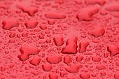 Drops Of Rain Or Water Drop On The Hood Of The Red Car. Rain Drops On The Surface Of The Car Or On T poster