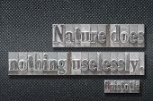 Nature Does Nothing Uselessly - Ancient Greek Philosopher Aristotle Quote Made From Metallic Letterp poster
