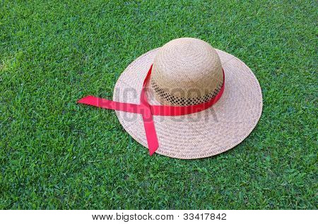 Hat and Red Ribbon