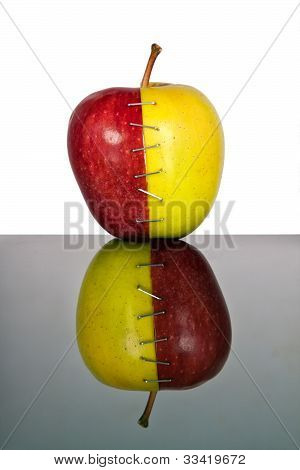 Red And Yellow Apple Halves Joined Together