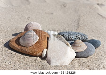 Pebbles and shells.