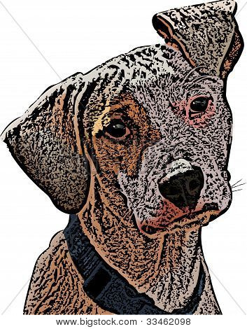 Flop Eared Mutt Illustration