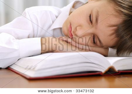 Little Boy Sleeping With Book