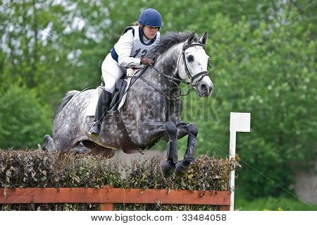 Woman eventer on horse is overcomes the fence