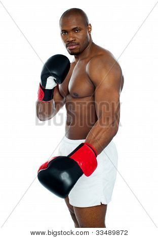 I Am A Boxer. Common Face Me
