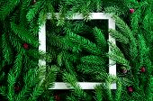 Christmas Tree Branches Background. Christmas Frame. Holidays Background Happy New Year. Christmas  poster