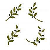 Set Of Green Vector Olive Branch Logo. Olive Oil Sign. Symbol Of Peace. Greek Religious Sign. Mythol poster
