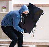Man burglar stealing tv set from house poster