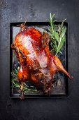 Traditional roasted stuffed Christmas Peking duck with herbs as top view on a board  poster