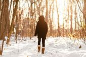 Winter snow walk woman walking away in snowy forest on woods trail outdoor lifestyle active people.  poster