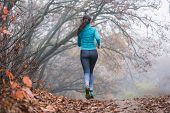 Woman Jogging Jumping In Forest, No Face. Fallen Foliage On The Ground, Autumn Foggy Morning. Flying poster