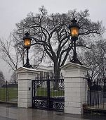 White House, NW Gate, Early Winter Morning