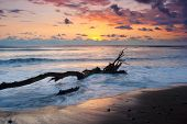 foto of driftwood  - Vibrant sunset at Dominical Costa Rica with Driftwood floating in surf - JPG