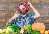 Man Hold Grapes Wooden Background. Farmer Proud Of Grapes Harvest. Fresh Organic Harvest. Grapes Fro poster
