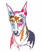 Colorful Decorative Contour Outline Portrait Of Dog Miniature Pinscher, Vector Illustration In Diffe poster