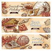 Vector Holiday Travel Quotes, Sea And Ocean Shells, Underwater Corals, Summer Beach Vacations Journe poster