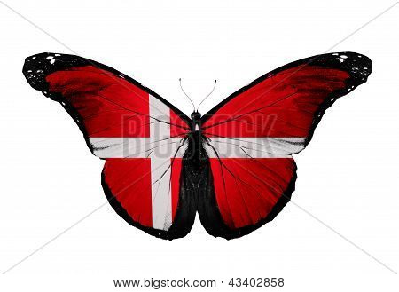 Denmark Flag Butterfly, Isolated On White Background