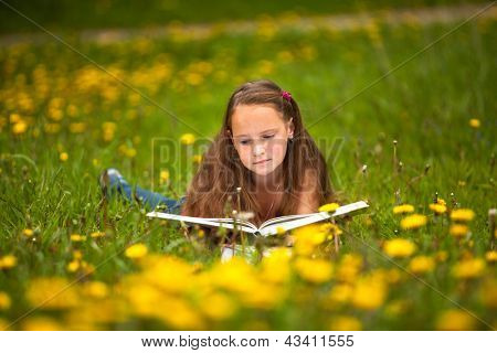 Teengirl reads a book in the meadow.