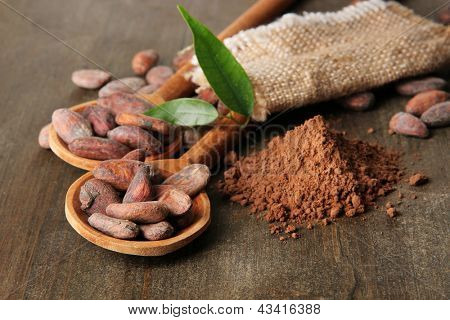 Cocoa beans in spoons and cocoa powder on wooden background