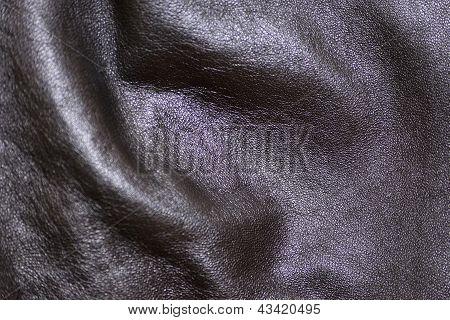 Skin, Natural, Black Colour, Close-up
