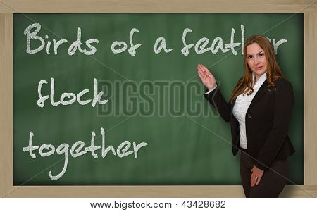 Teacher Showing Birds Of A Feather Flock Together On Blackboard