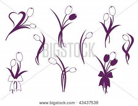 Tulip Desing Element