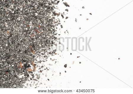Close up of ash with copy space on white background