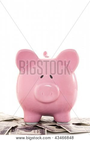 Close up of a pink piggy bank on dollars on white background