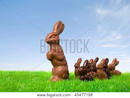 Chocolate Bunny Leading