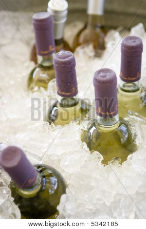 Wine Bottles On Ice