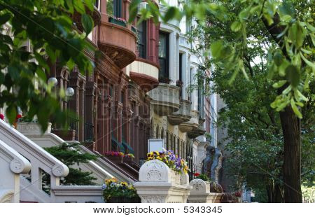 Row Of Brownstones